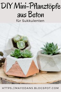Mini-Pflanztöpfe aus Beton für Sukkulenten