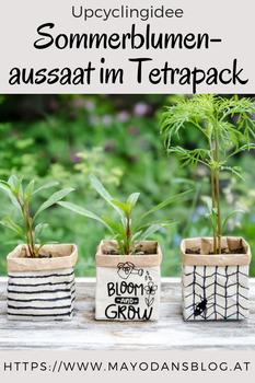 Upcyclingidee - Sommerblumenaussaat im Tetrapack