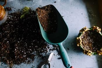 Tipps und Tricks für Ihren Gartenboden
