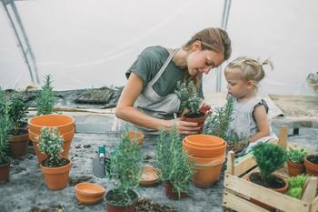 Urban Gardening für Stadtfamilien