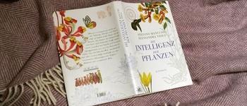 Rezension: Die Intelligenz der Pflanzen von Stefano Mancuso und Alessandra