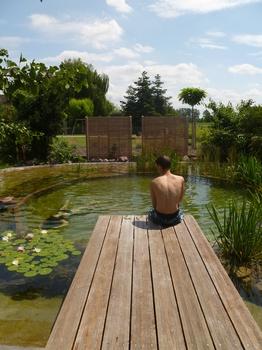 Schwimmteich - Wohlfühloase im eigenen Garten
