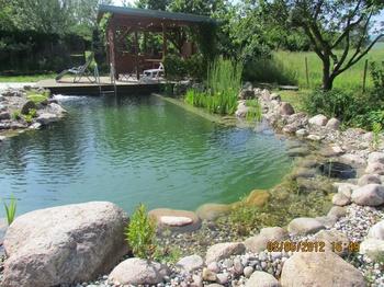 Schwimmteich - Überleitung zur Natur