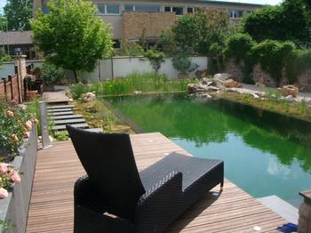 Naturpool - Schwimmteich