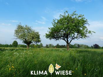 Klimaweise - ein Projekt für Artenvielfalt
