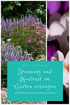 Spannung und Kontrast im Garten erzeugen