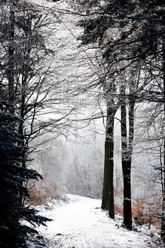 Es ist Winter