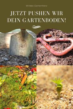 Pushe deinen Gartenboden!