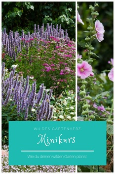 Minikurs - Wie du deinen Garten planst