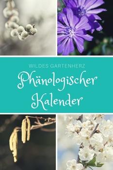 Phänologischer Kalender