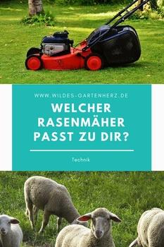Welcher Rasenmäher passt zu dir?