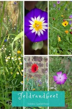 Ein Feldrandbeet in deinem Garten!