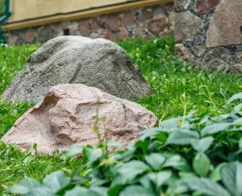 Gartensteine: zwei Farben