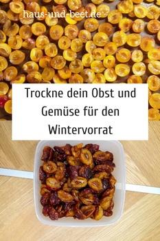 Trockne dein Obst und Gemüse für den Wintervorrat