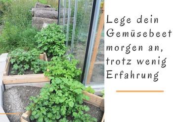 Lege dein Gemüsebeet morgen an, trotz wenig Erfahrung