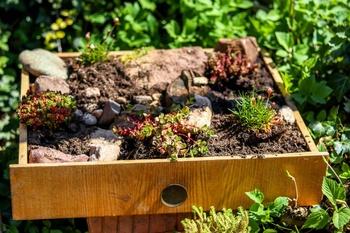 Gartendeko mit alten Schubladen: So legst du in 7 einfachen Schritten ein b