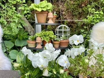 So wird der Garten pflegeleicht!