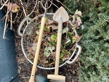 5 Arbeiten für den Gärtner Anfang März