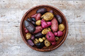 Kartoffeln aus dem Sack – für den Eigenanbau jetzt vorkeimen lassen