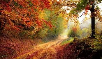 Mabon oder die Herbsttagundnachtgleiche