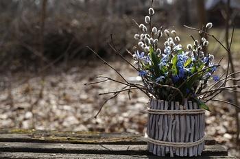 Am Samstag ist Frühlingsbeginn!