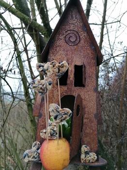 Vögel weiterfüttern, aber wie?