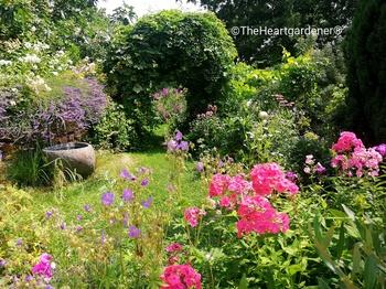 Impression aus meinem Garten