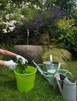 BIODÜNGER aus dem eigenen Garten!